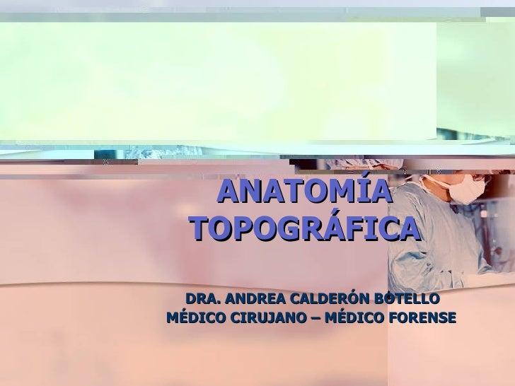 ANATOMÍA TOPOGRÁFICA DRA. ANDREA CALDERÓN BOTELLO MÉDICO CIRUJANO – MÉDICO FORENSE