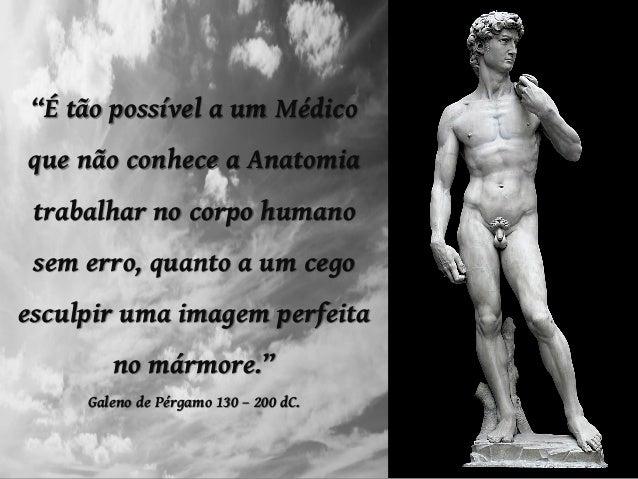 """""""É tão possível a um Médico que não conhece a Anatomia trabalhar no corpo humano sem erro, quanto a um cego esculpir uma i..."""
