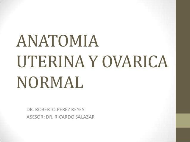 ANATOMIAUTERINA Y OVARICANORMALDR. ROBERTO PEREZ REYES.ASESOR: DR. RICARDO SALAZAR
