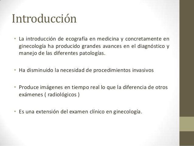 Anatomia uterina y ovarica normal Slide 2