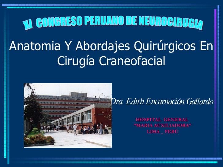 Anatomia Y Abordajes Quirúrgicos En Cirugía Craneofacial Dra. Edith Encarnación Gallardo XI  CONGRESO PERUANO DE NEUROCIRU...