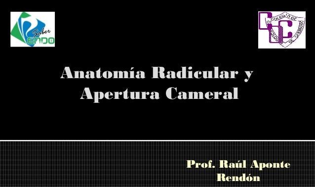 download Digitale Kleinrechner