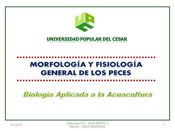 Anatomia y fisiología de peces