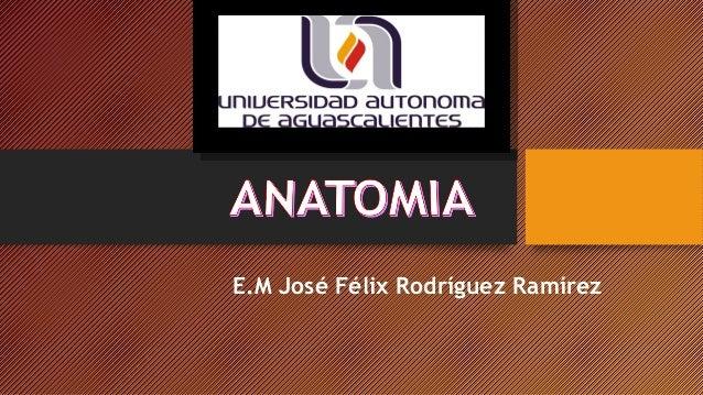 E.M José Félix Rodríguez Ramírez