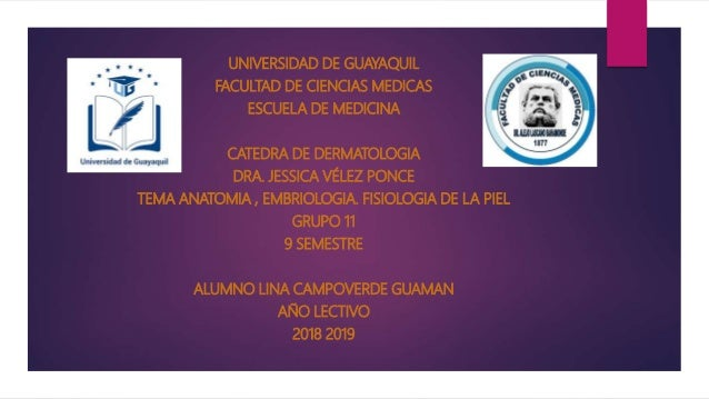Embriologia Anatomia y fisiologia DE LA PIEL