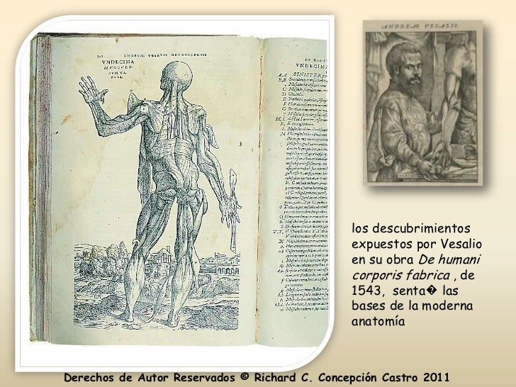 Anatomia y Fisiologia Capitulo 1
