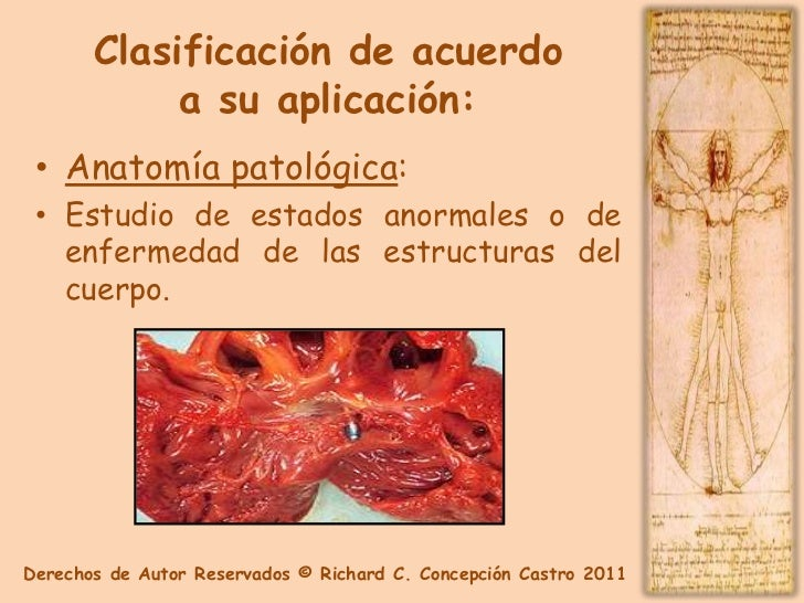 Anatomia y Fisiologia Capitulo 2