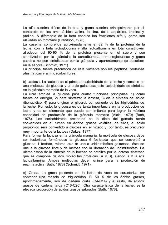 anatomia-y-fisiologia-de-la-glandula-mamaria-31-638.jpg?cb=1355080359