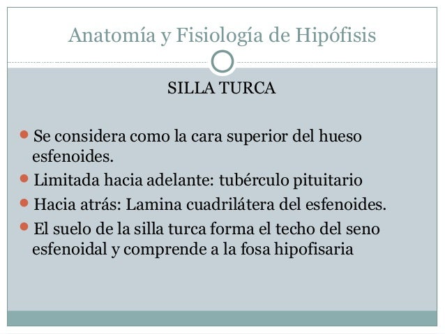 Anatomia y fisiologia de la hipofisis y glandulas suprarenales ok