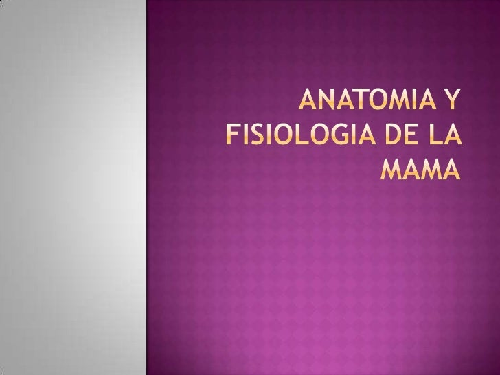 Anatomia y Fisiologia de la Mama<br />