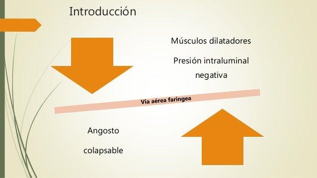 Anatomia y fisiologia de la obstruccion de via aerea superior