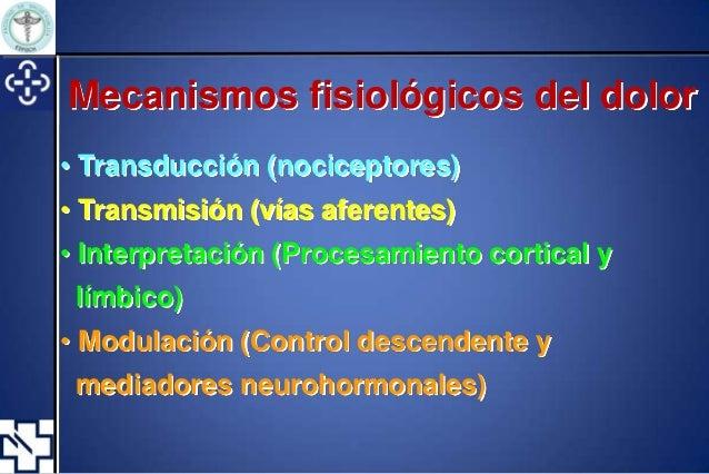 Anatomía y fisiología del dolor.