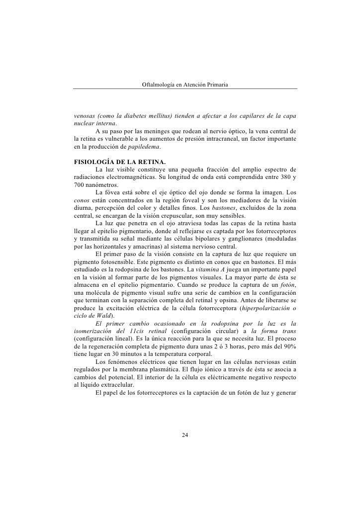 Moderno La Anatomía Y La Fisiología De La Retina Colección ...