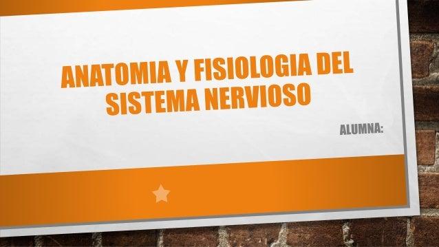 Anatomia y fisiologia del sistema nervioso