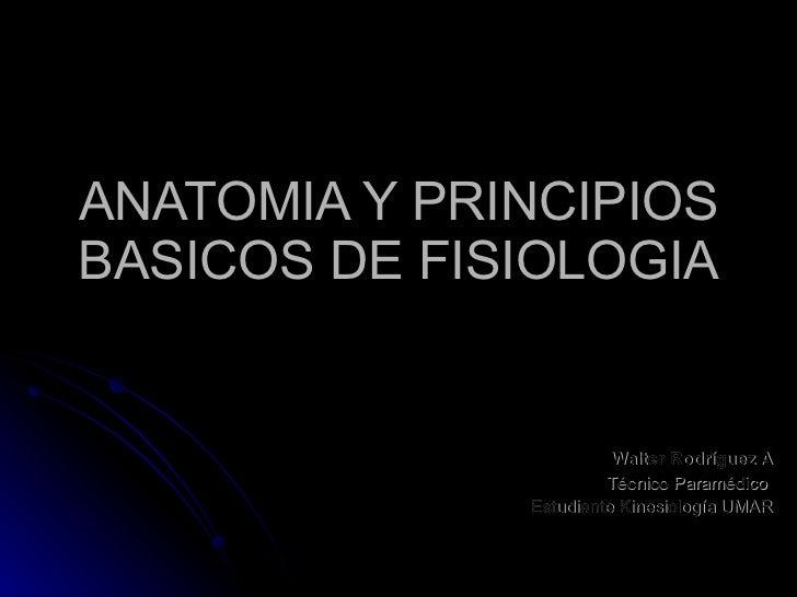 Anatomia y principios basicos de fisiologia