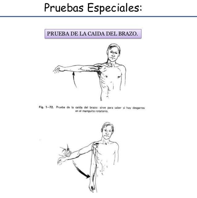 Anatomia y semiologia de hombro
