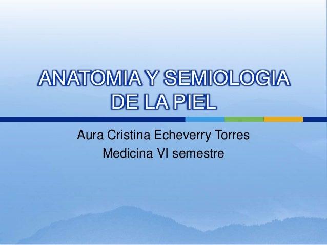 ANATOMIA Y SEMIOLOGIA     DE LA PIEL   Aura Cristina Echeverry Torres       Medicina VI semestre