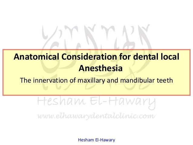 Hesham El-Hawary Anatomical Consideration for dental local Anesthesia The innervation of maxillary and mandibular teeth