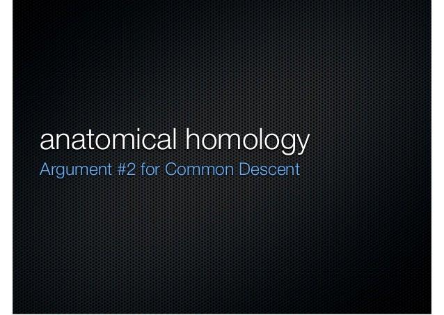 anatomical homologyArgument #2 for Common Descent