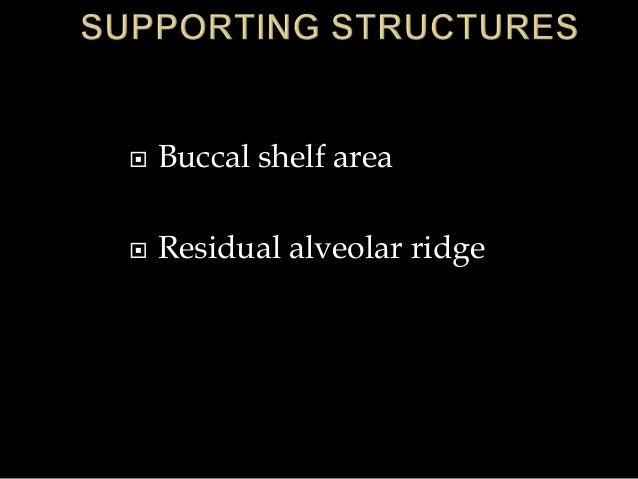  Buccal shelf area  Residual alveolar ridge