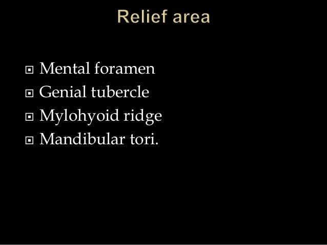  Mental foramen  Genial tubercle  Mylohyoid ridge  Mandibular tori.