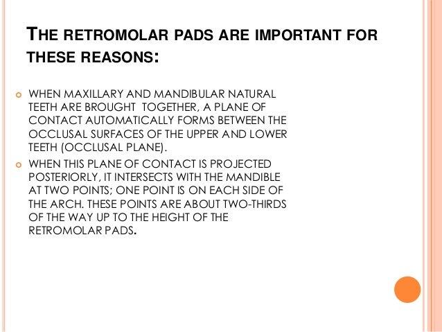Retromolar pad boundaries in dating 2