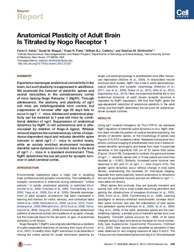 NeuronReportAnatomical Plasticity of Adult BrainIs Titrated by Nogo Receptor 1Feras V. Akbik,1 Sarah M. Bhagat,1 Pujan R. ...