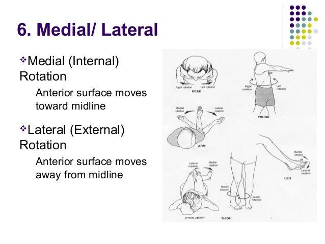 Anatomical Positionppt 1