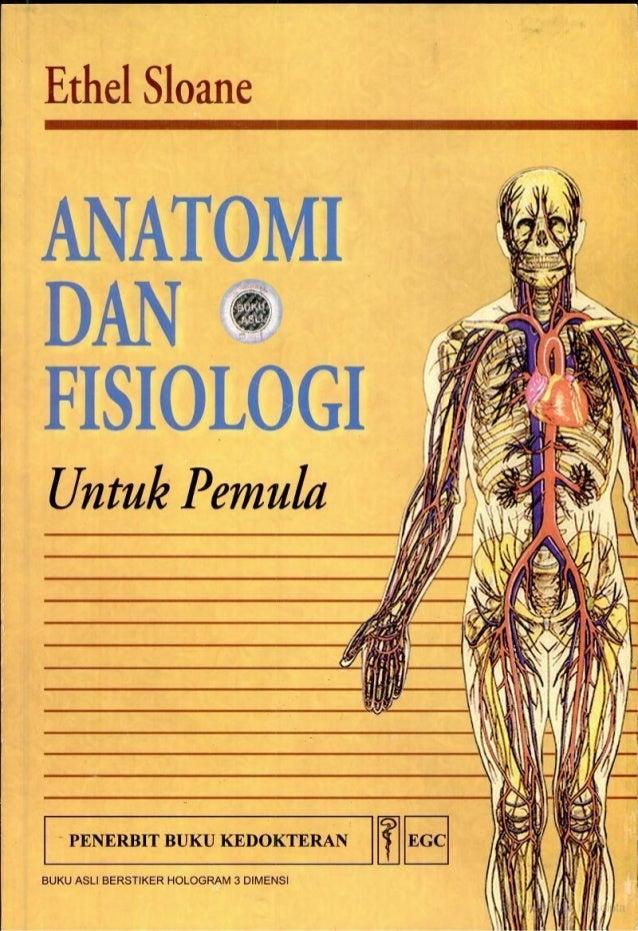 Anatomi Dan Fisiologi Manusia Pemula