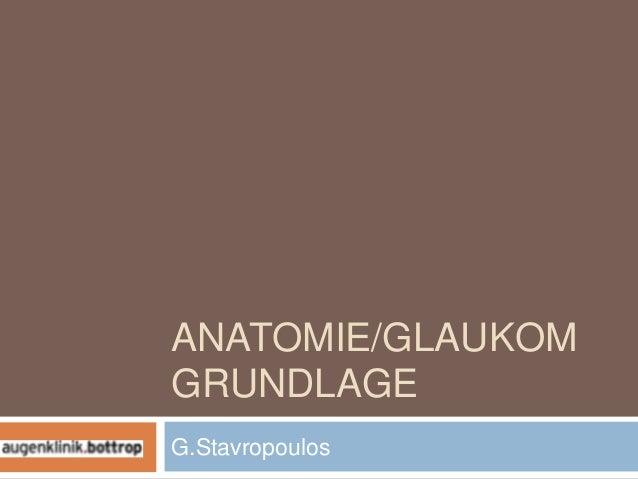 ANATOMIE/GLAUKOMGRUNDLAGEG.Stavropoulos