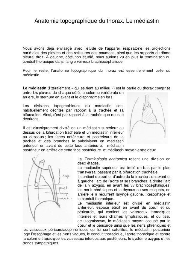 Anatomie topographique du thorax. Le médiastin  Nous avons déjà envisagé avec l'étude de l'appareil respiratoire les proje...