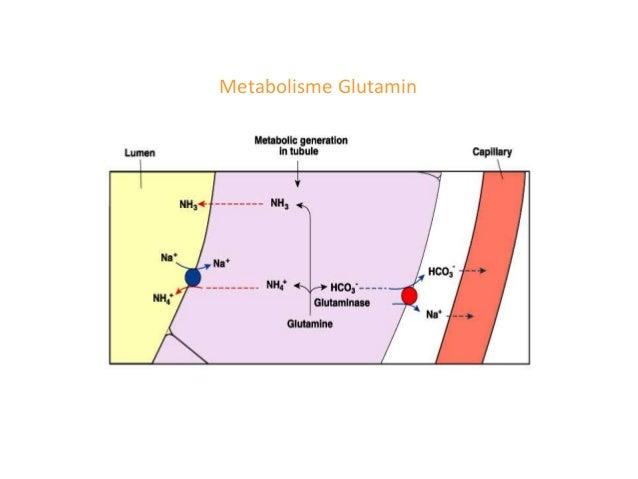 - Pemeriksaan radio isotop : menghasilkan informasi tentang perfusi ginjal dan sangat berguna untuk menunjukan fungsi ginj...