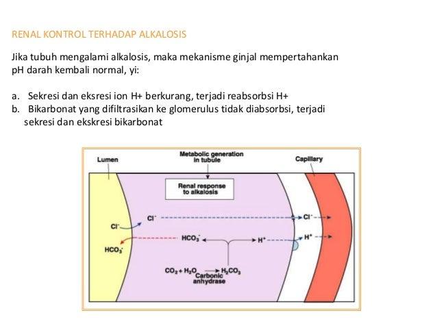 DAFTAR PUSTAKA • Evelyn C. Pears. 2011. Anatomi dan fisiologi untuk paramedis – Jakarta : Gramedia Pustaka Utama. • Guyton...