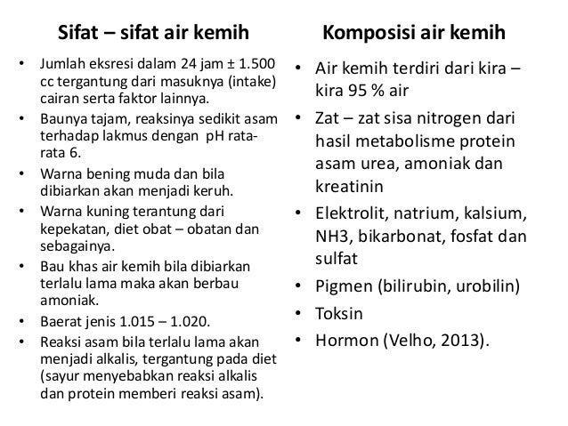 Anatomi Fisiologi  Sistem Perkemihan (Traktus Urinarius)