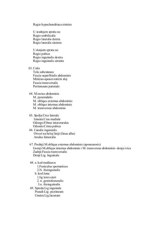 Anatomija   test - copy