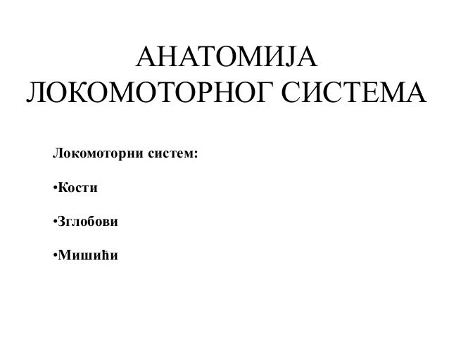 АНАТОМИЈА ЛОКОМОТОРНОГ СИСТЕМА Локомоторни систем: •Кости •Зглобови •Мишићи