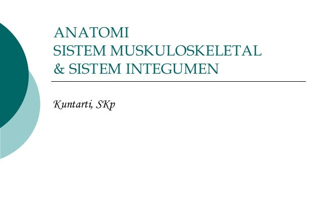 ANATOMI SISTEM MUSKULOSKELETAL & SISTEM INTEGUMEN Kuntarti, SKp