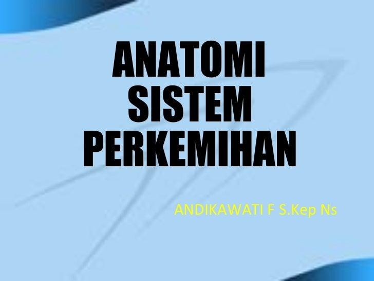 ANDIKAWATI F S.Kep Ns ANATOMI  SISTEM PERKEMIHAN