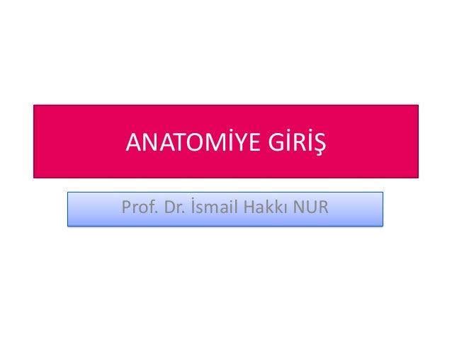 ANATOMİYE GİRİŞ Prof. Dr. İsmail Hakkı NUR