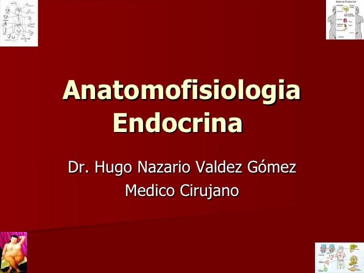 Anatomofisiologia Endocrina   Dr. Hugo Nazario Valdez Gómez Medico Cirujano