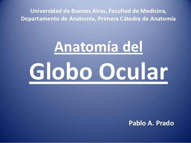 Universidad de Buenos Aires, Facultad de Medicina,Departamento de Anatomía, Primera Cátedra de Anatomía           Anatomía...