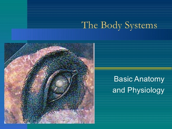 The Body Systems Basic Anatomy and Physiology