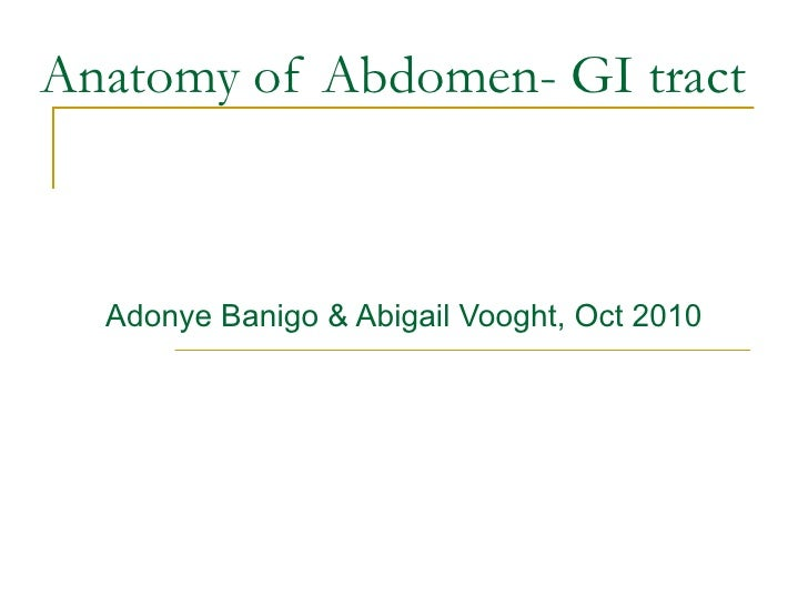 Anatomy of Abdomen- GI tract Adonye Banigo & Abigail Vooght, Oct 2010