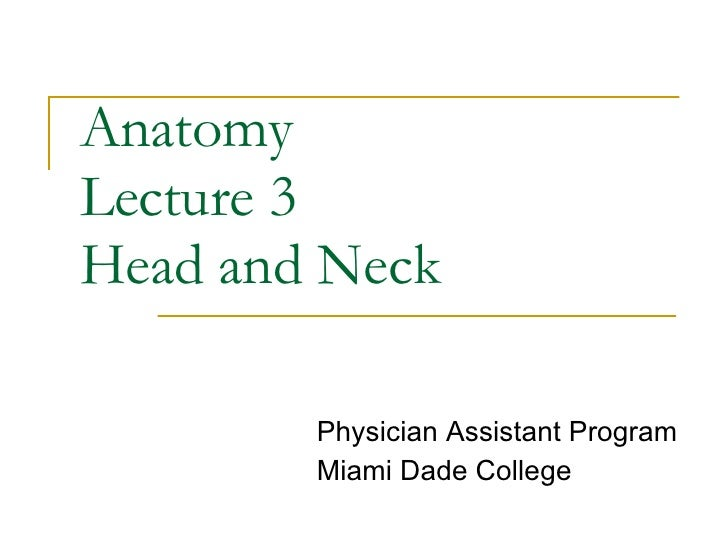 Anatomy Lect 3 Head & Neck