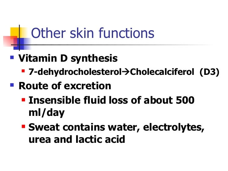 Anatomy Physiology Slides on First Line Of Defense Immune System Skin