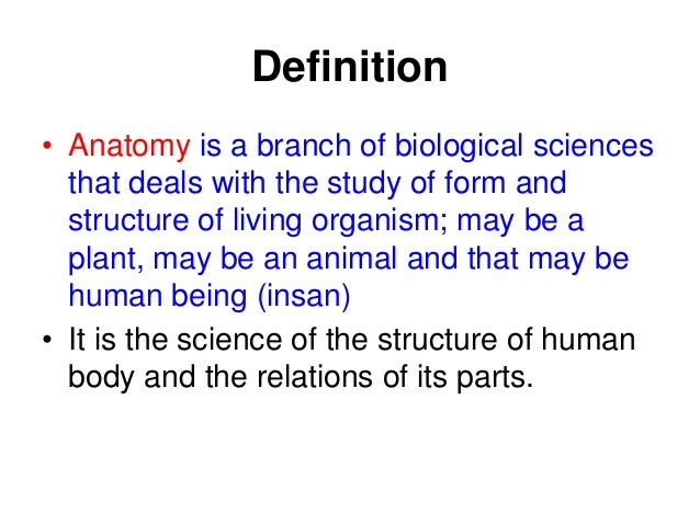 Anatomy (2)