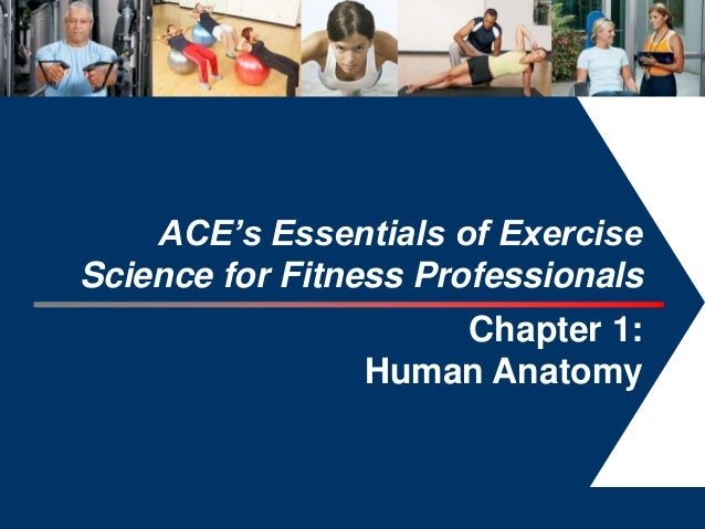 ACE's Essentials of ExerciseScience for Fitness Professionals                    Chapter 1:                Human Anatomy  ...