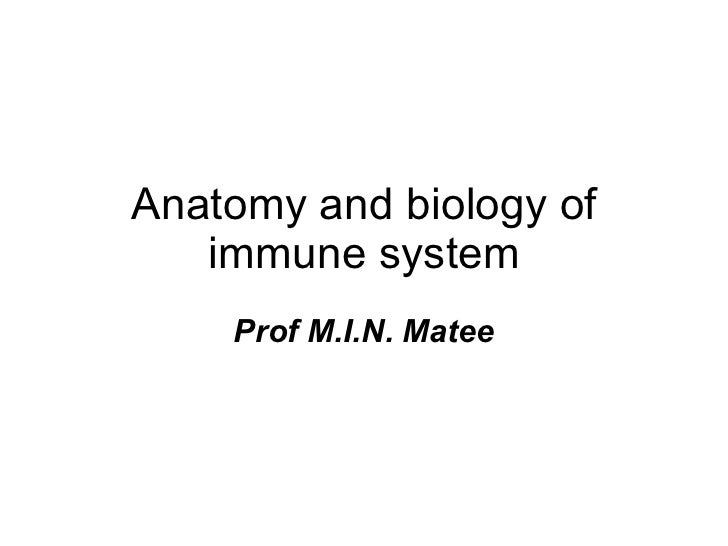Anatomy and biology of immune system Prof M.I.N. Matee