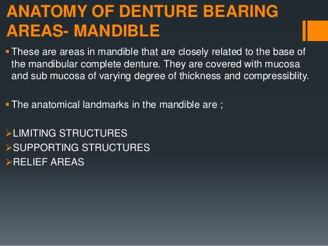 LIMITING STRUCTURES OF THE MANDIBLE LABIAL FRENUM LABIAL VESTIBULE BUCCAL FRENUM BUCCAL VESTIBULE LINGUAL FRENUM ALV...