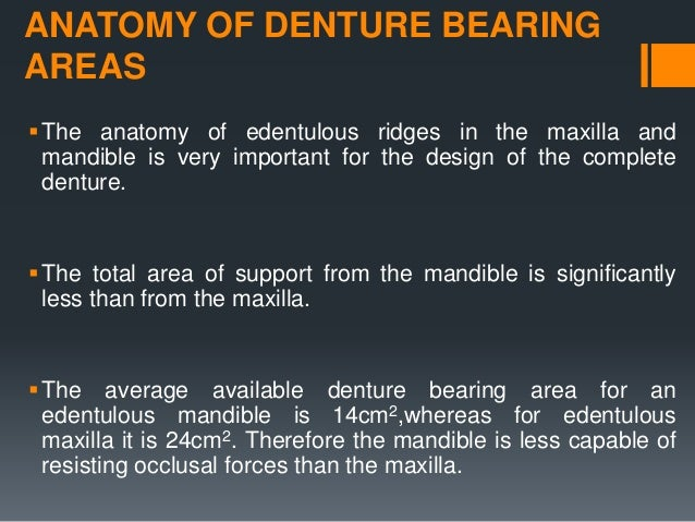 ANATOMY OF DENTURE BEARING AREAS The anatomy of edentulous ridges in the maxilla and mandible is very important for the d...